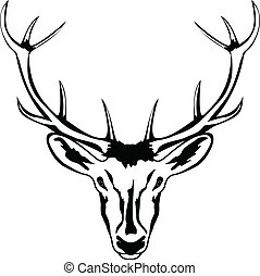 Head of deer with horns - Vector an illustration of head of...