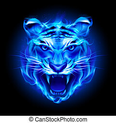 Head of fire tiger in blue. Illustration on black...