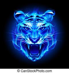 Head of fire tiger in blue. Illustration on black background...