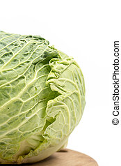 Head of green cabbage with copy space