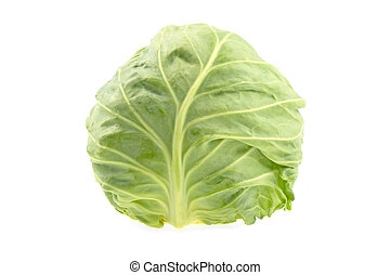 head of green organic cabbage on a white background, isolated