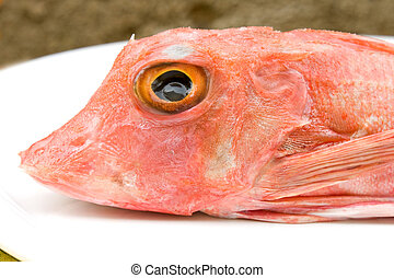 Head Of Gurnard Fish