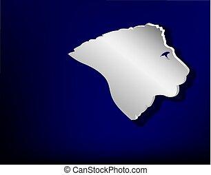 Head of lion.