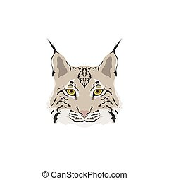 Head of lynx isolated on white background.