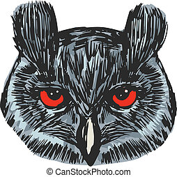 head of owl