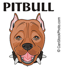 head of pitbull with words