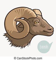 Head of ram - Head of goat or ram. Vector illustration for ...