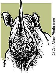head of rhino