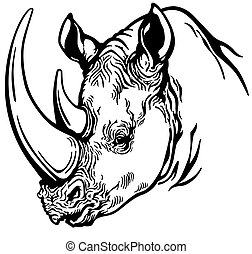 head of rhino