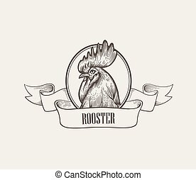 Head of rooster or cock inside round frame decorated with ribbon hand drawn in vintage engraving or woodcut style. Domestic fowl, poultry farm bird. Vector illustration for label, advertisement