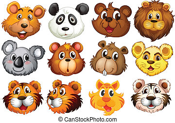 Head of the different animals