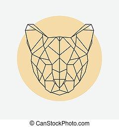 Head of wild cat puma.