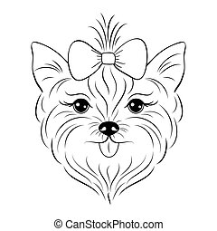 Head of yorkshire terrier