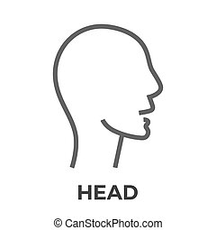 Head thin line vector icon