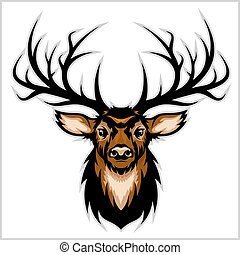 head., vector, venado, illustration.