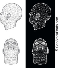 head., vettore, umano, illustrazione
