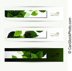 Headers set of three banners of the environment