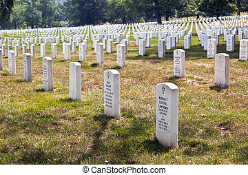Headstones at the Arlington national Cemetery - tourists in...