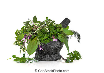 Herb leaf selection of sage, rosemary, parsley, fennel, sorrel, angelica and lavender with flowers with a granite mortar with pestle, over white background.