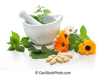Healing herbs and a mortar. Alternative medicine concept