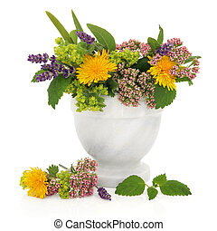 Lavender, valerian, ladies mantle and dandelion flower heads with aloe vera and lemon balm leaves in a marble mortar isolated over white background.