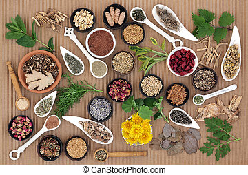 Healing Herbs for Women - Healing herb and spice selection...