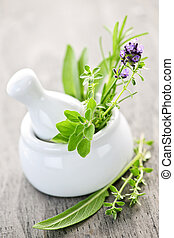 Healing herbs in mortar and pestle - Healing herbs in white ...