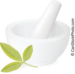 Healing herbs in white ceramic mortar. Vector