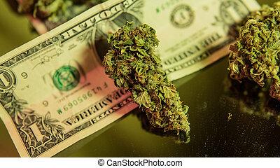 Healing medical strains of cannabis marijuana close-up. ...