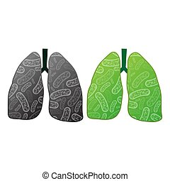 Health and ilness lungs