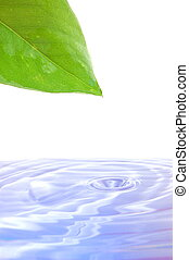 health and wellness concept with splashing water drop and...