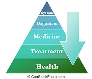 Health pyramid illustration