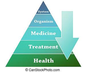 Health pyramid illustration