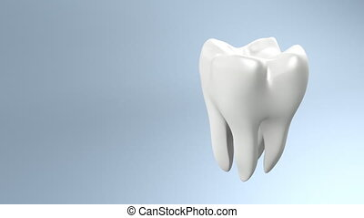 The health of white tooth for tooth care concept.