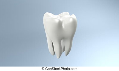 health tooth - The health of white tooth for tooth care...