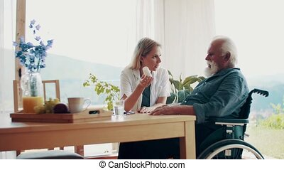 Health visitor and a senior man in wheelchair at home,...