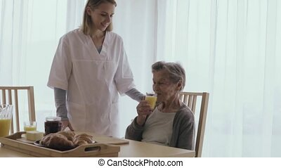 Health visitor and a senior woman during home visit. An...