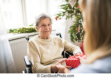 Health visitor and senior woman in wheelchair with a present at home at Christmas.
