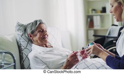 Health visitor giving pills to a sick senior woman lying in...