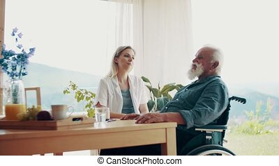 Health visitor with stethoscope and a senior man in wheelchair at home, talking.