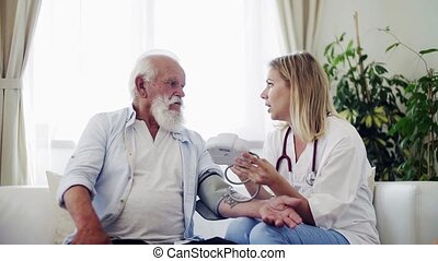 Health visitor with stethoscope checking blood pressure of a...