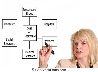 Female executive drawing health care diagram on a whiteboard