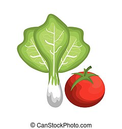 healthy and fresh vegetables