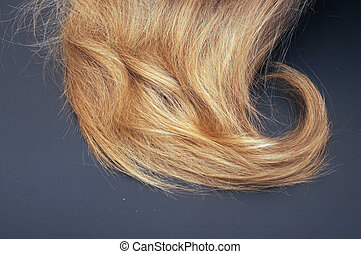 healthy blond hair on black background
