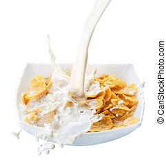 Healthy Breakfast. Cornflakes And Milk Splash. Isolated On...