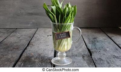 Healthy eating. Wood garlic on vintage table - leaves of...