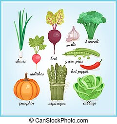 Healthy fresh vegetables icons