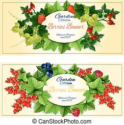 Healthy fruits and berries banners set