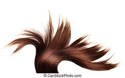 healthy hair - human brown hair on white isolated background