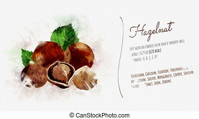 The animation tells about useful properties and substances contained in the Hazelnut. A ready-to-use card can decorate your video about a vegetarian, confectionery or a healthy lifestyle.